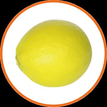 国産マイヤーレモンeエキス