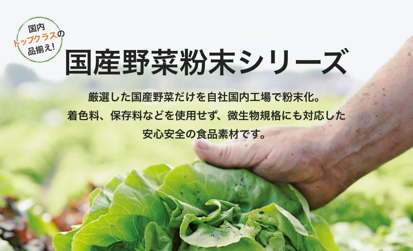 粉末 薬品 日本